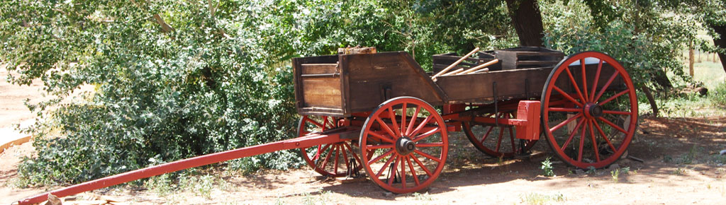Frontier Wagon